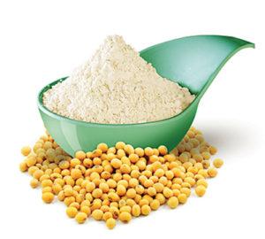 Organic Soy ingredients for food & feeding